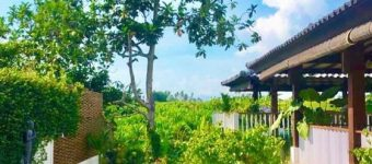 Dijual Villa di Pererenan Canggu View Sawah Fully Furnished