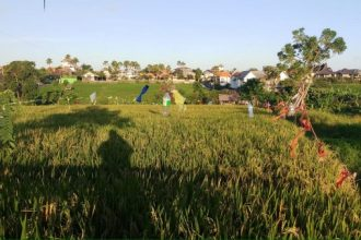Jual Tanah di Jalan Subak Canggu View Sawah T269